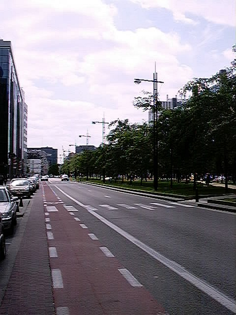 thopdeweg.jpg